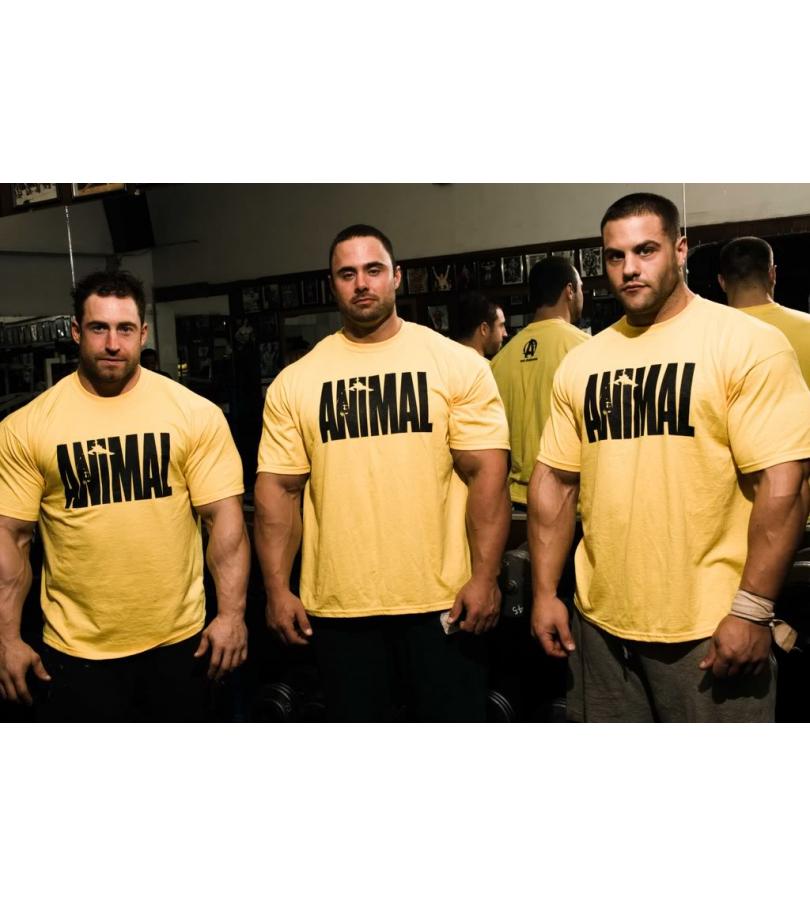 Universal Sportswear Animal Shirt Gelb I T-Shirt I Sport I Bodybuilding I Fitness